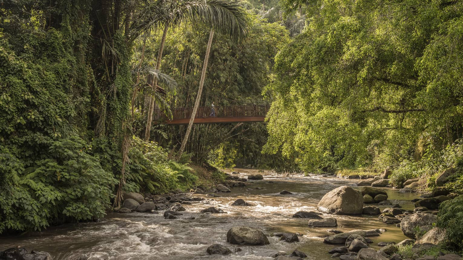 Sayan Bridge extends over a roaring river that flows around rocks and is surrounded by lush vegetation