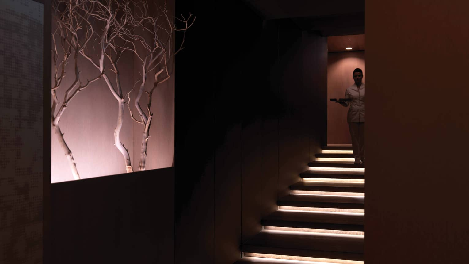 Spa staff descends down illuminated stairs, wall display with branches