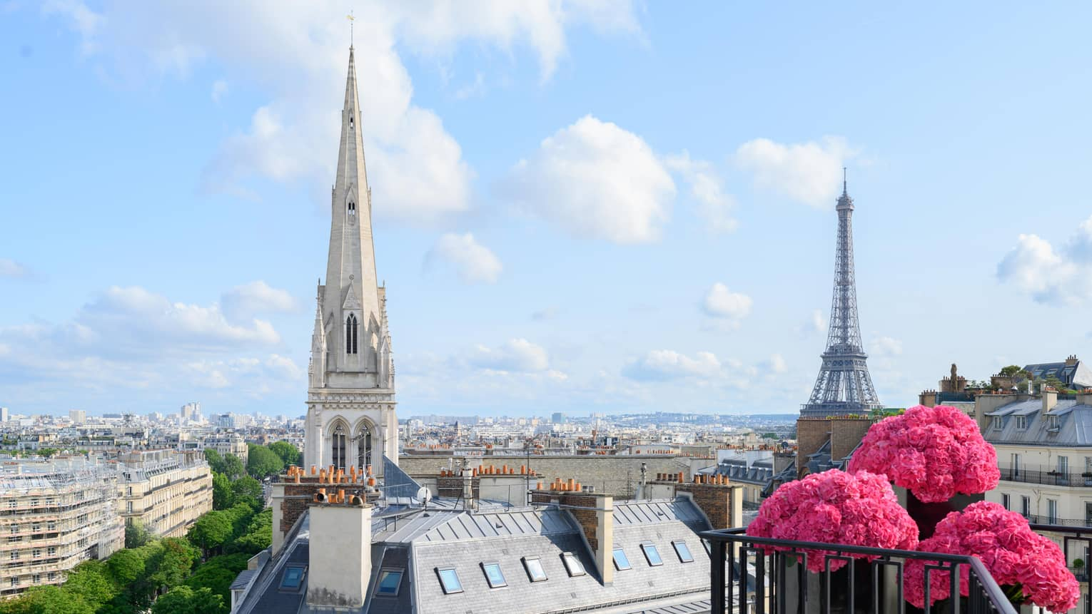 Pink flowers on balcony in front of Paris rooftops, cathedral and blue sky