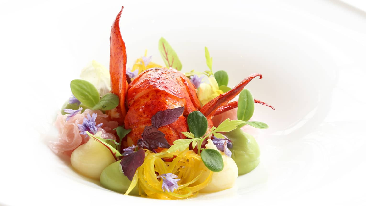 Beautifully presented red lobster tail with fresh accompaniments