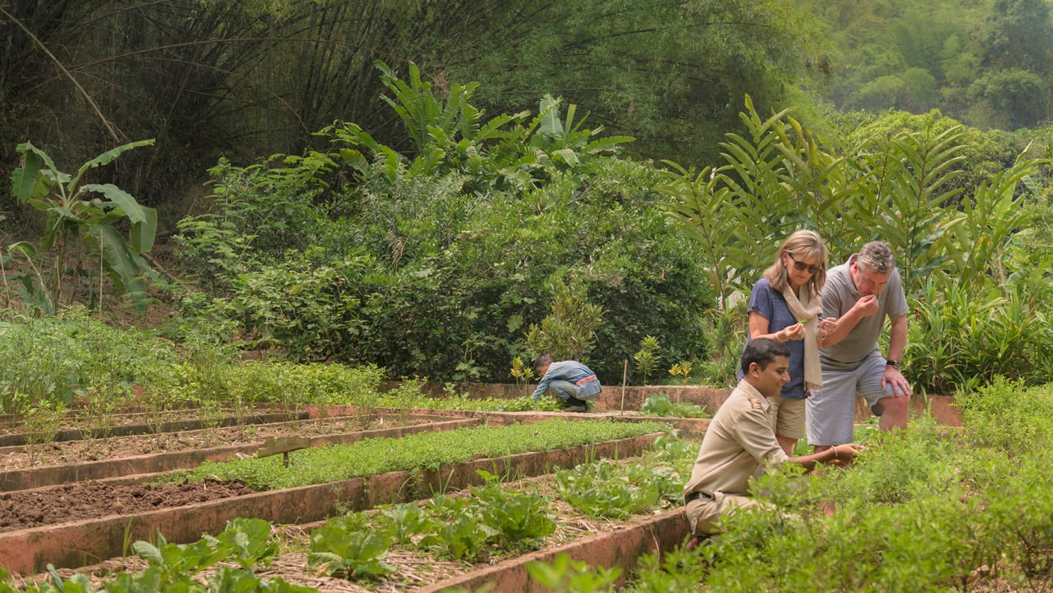 Couple is shown regional herbs, fruits and vegetables by kneeling staff member in lush garden