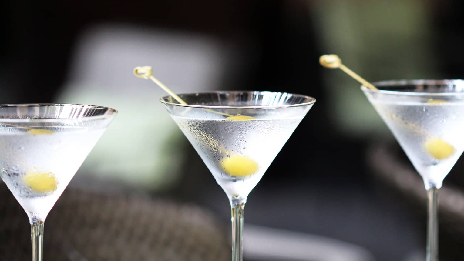 Close-up of row of vodka martinis in glasses with olive garnish on toothpicks