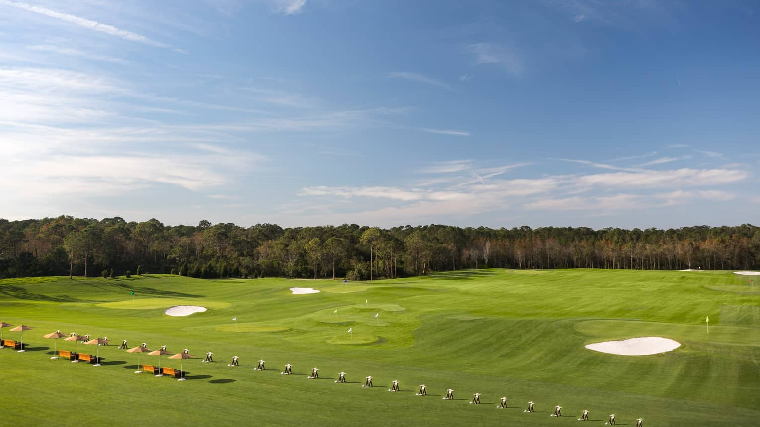 View over large green field golf practice facility, trees in distance