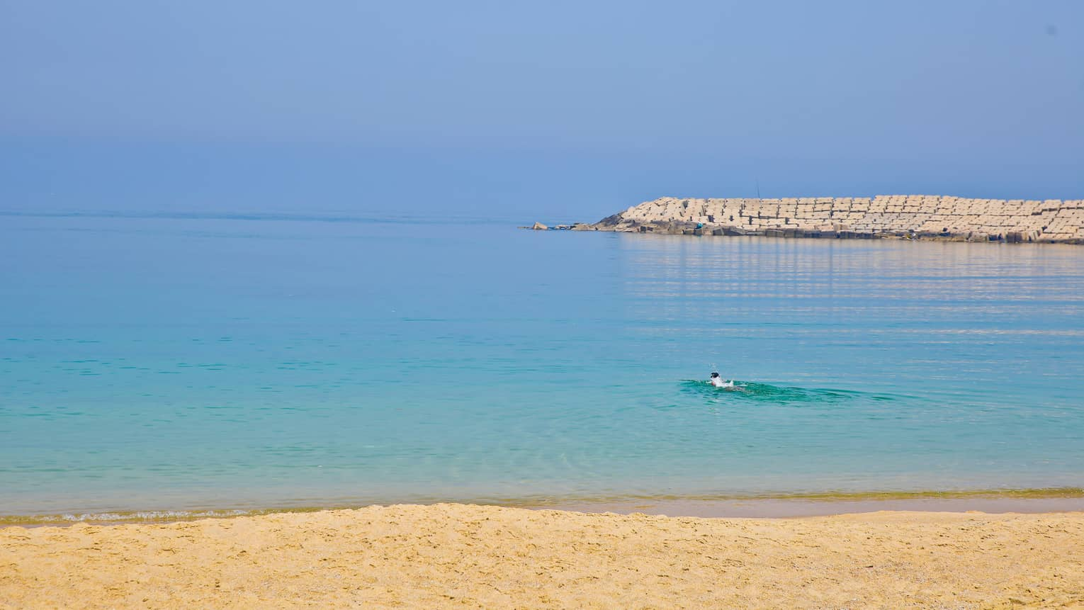 Swimmer in blue-green waters of Mediterranean Sea beyond yellow sand beach, brick barrier in background