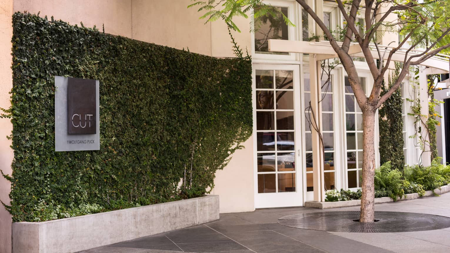 Cut by Wolfgang Puck sign on ivy-covered brick wall at hotel entrance