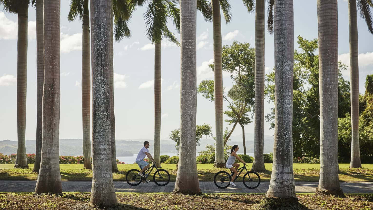 Man and woman cycle down path lined with tall palm tree trunks, past green lawn and garden