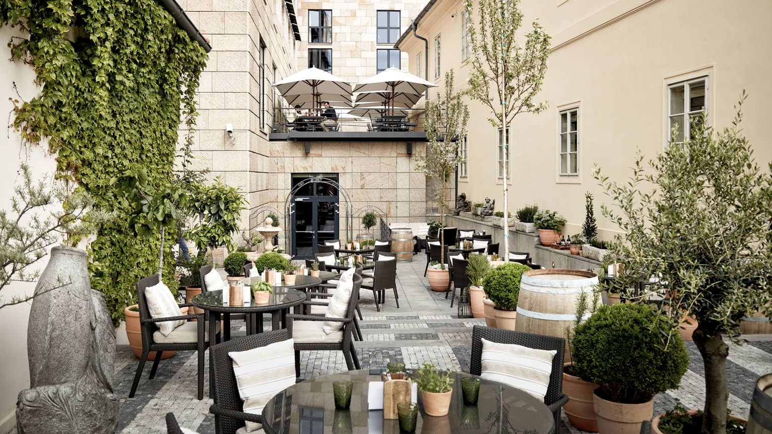 Rooftop terrace restaurant, round black rattan tables, chairs, ivy wall, potted trees
