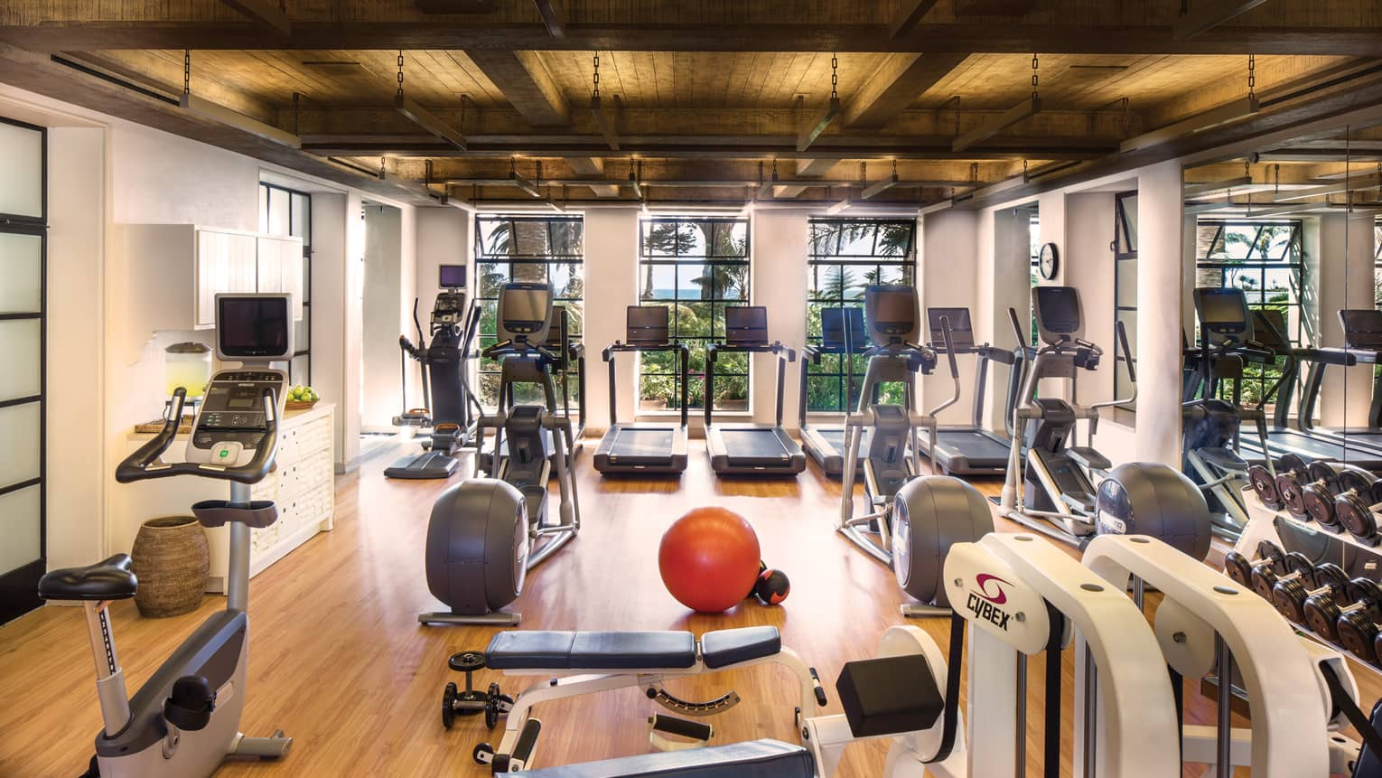 Fitness Centre cardio machines, weight centre, red pilates ball