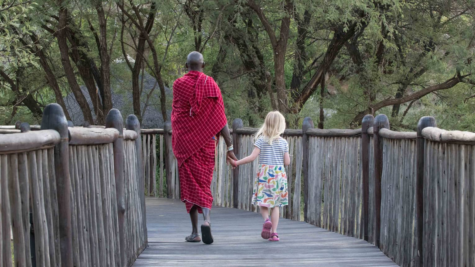 Maasai warrior holds hands, walks with young girl down wood bridge