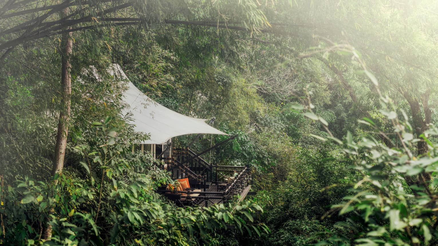 White tent canopy, wood balcony on misty mountain surrounded by bamboo forest
