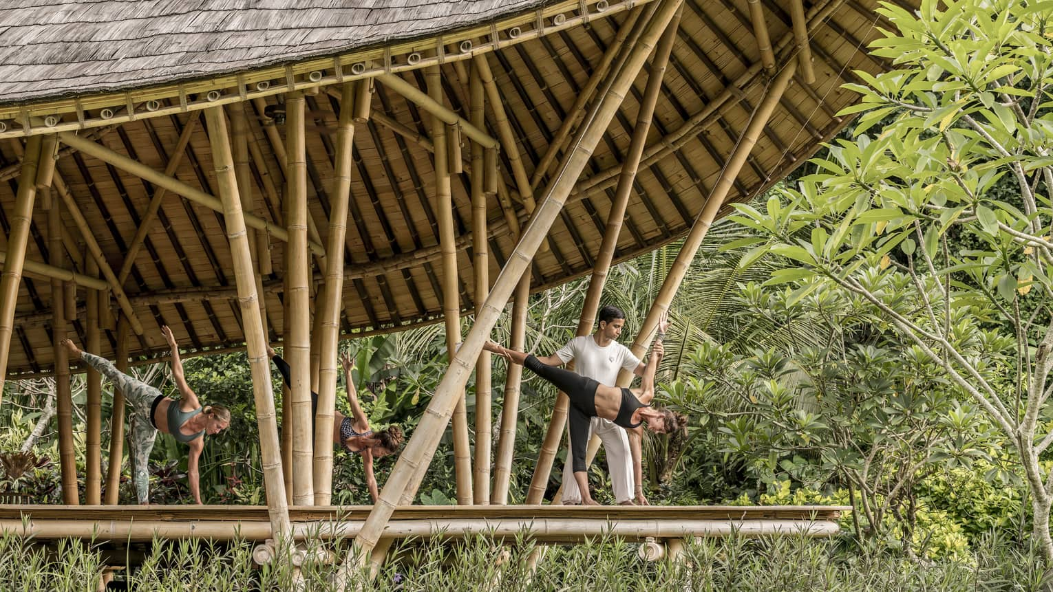 A group does yoga in a bamboo pavillion