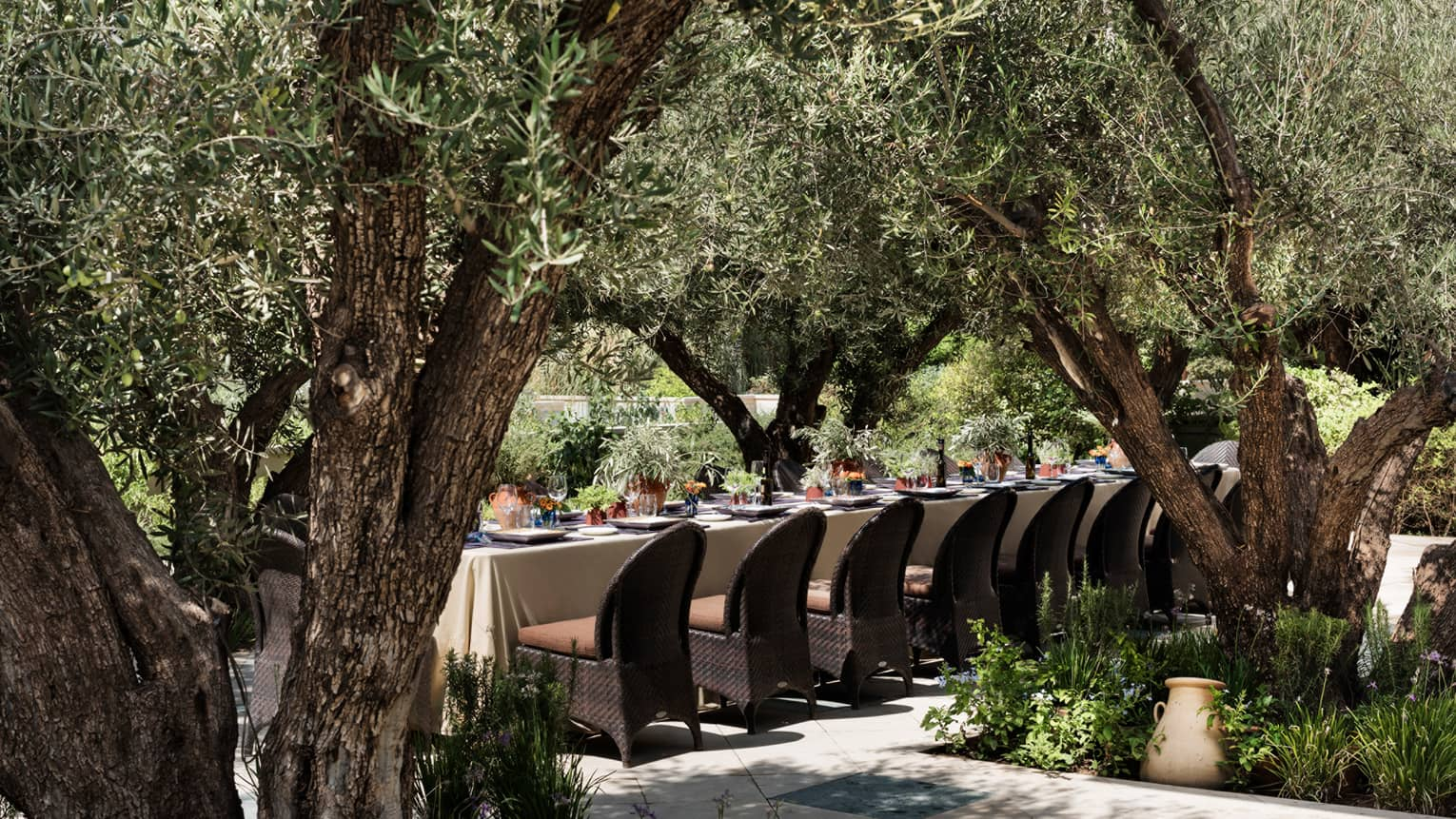 Long outdoor dining table with white tablecloth, chairs under thick trees in garden