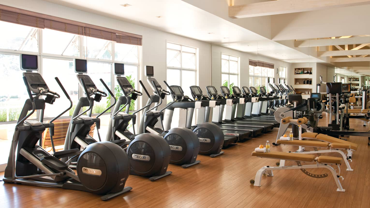 Row of elliptical cardio machines, treadmills by sunny windows in Fitness Centre