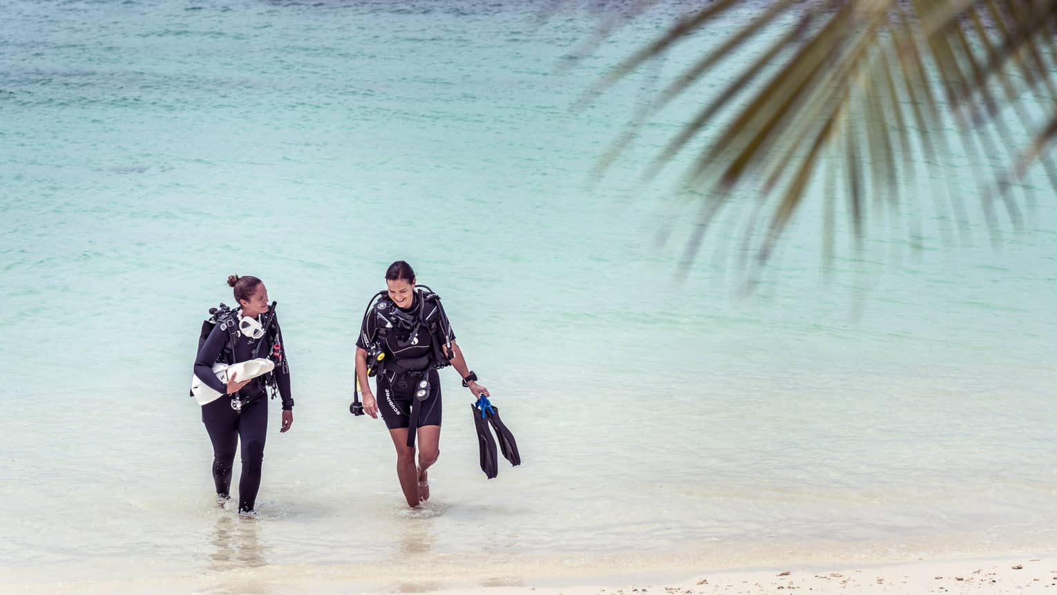 Couple walking out of the water onto the beach carrying scuba gear