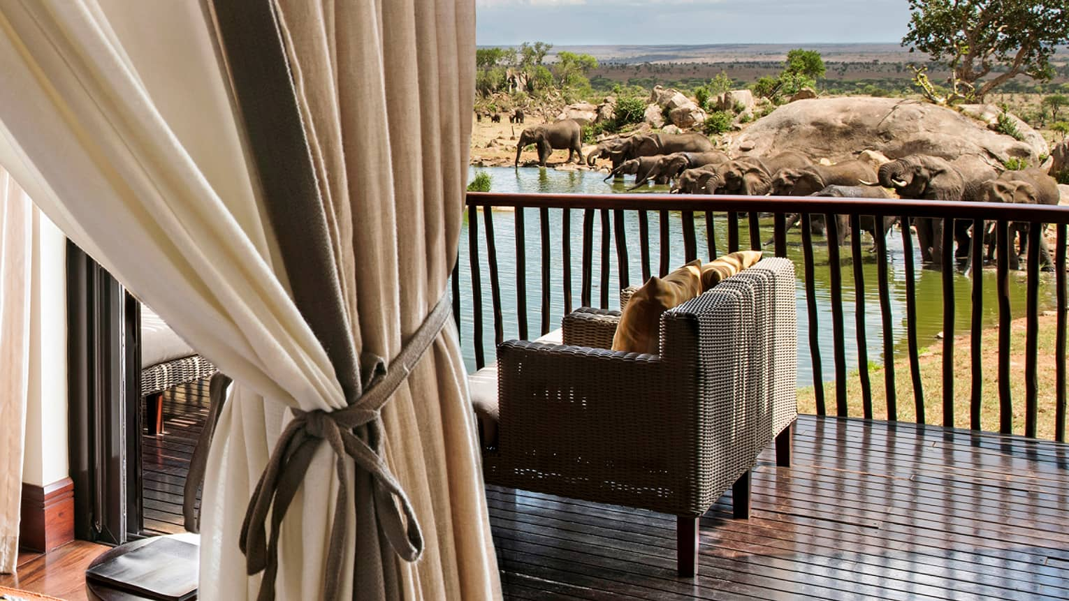 Savannah Room tied curtains in front of wicker loveseat on patio by elephants, waterhole
