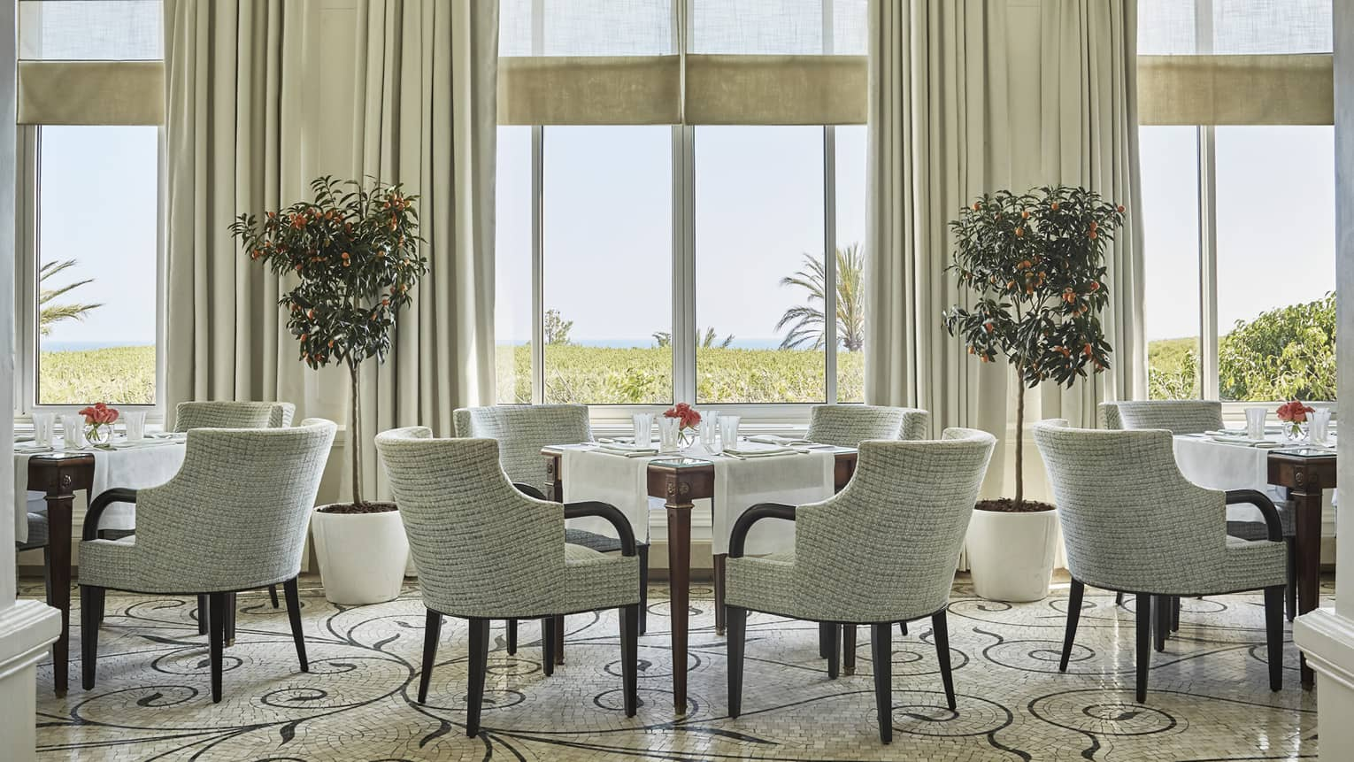 Dining chairs and tables under tall, sunny windows, potted trees in La Veranda