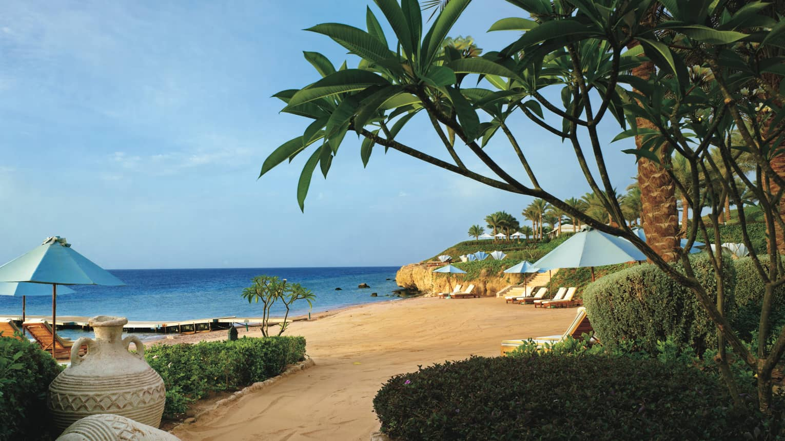 Palm trees, tropical plants hang over golden sand beach by sea