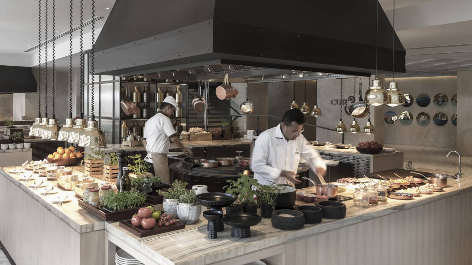 Chefs prepare meat and vegetable dishes an open kitchen