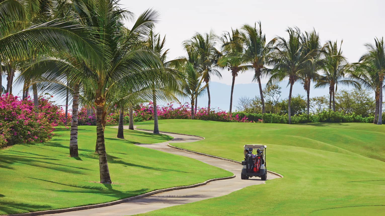 Back of golf cart driving down path on sunny golf course under palm trees