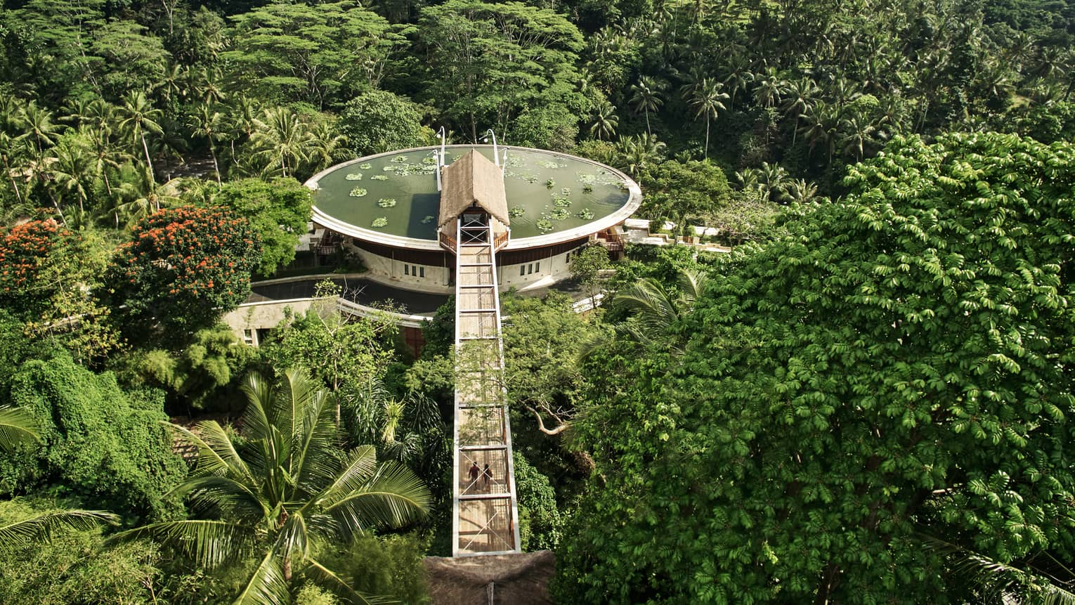 Aerial view of lotus pond at resort entrance, perched above jungle-like forest in Bali