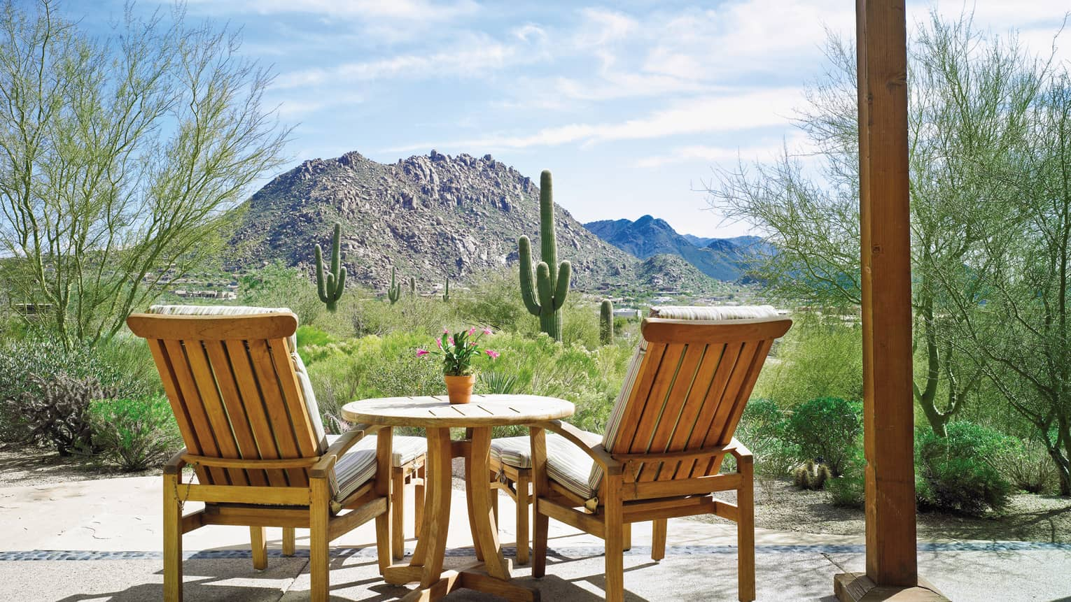 Back of two wood armchairs, table facing desert, cactus