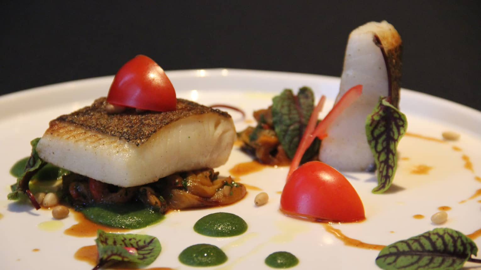 Seared halibut fish filet on plates with vegetables, sauce, herbs