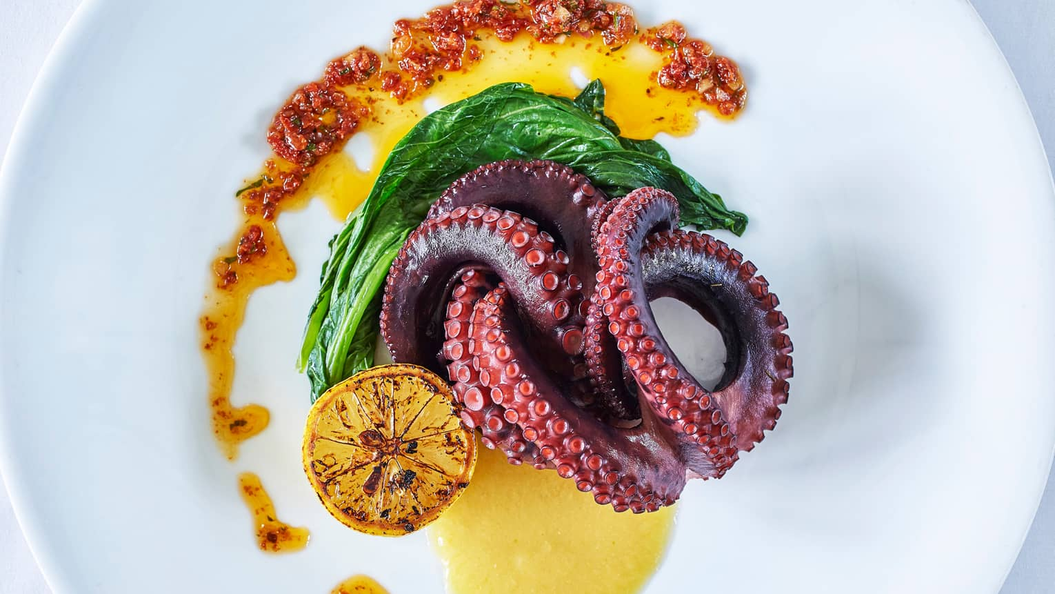 Roasted octopus legs intertwined on plate with roasted lemon, greens, sauce