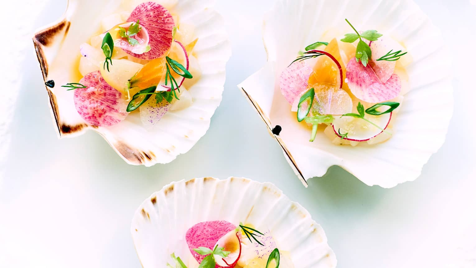 Scallop tartare with herbs plated on large seashells