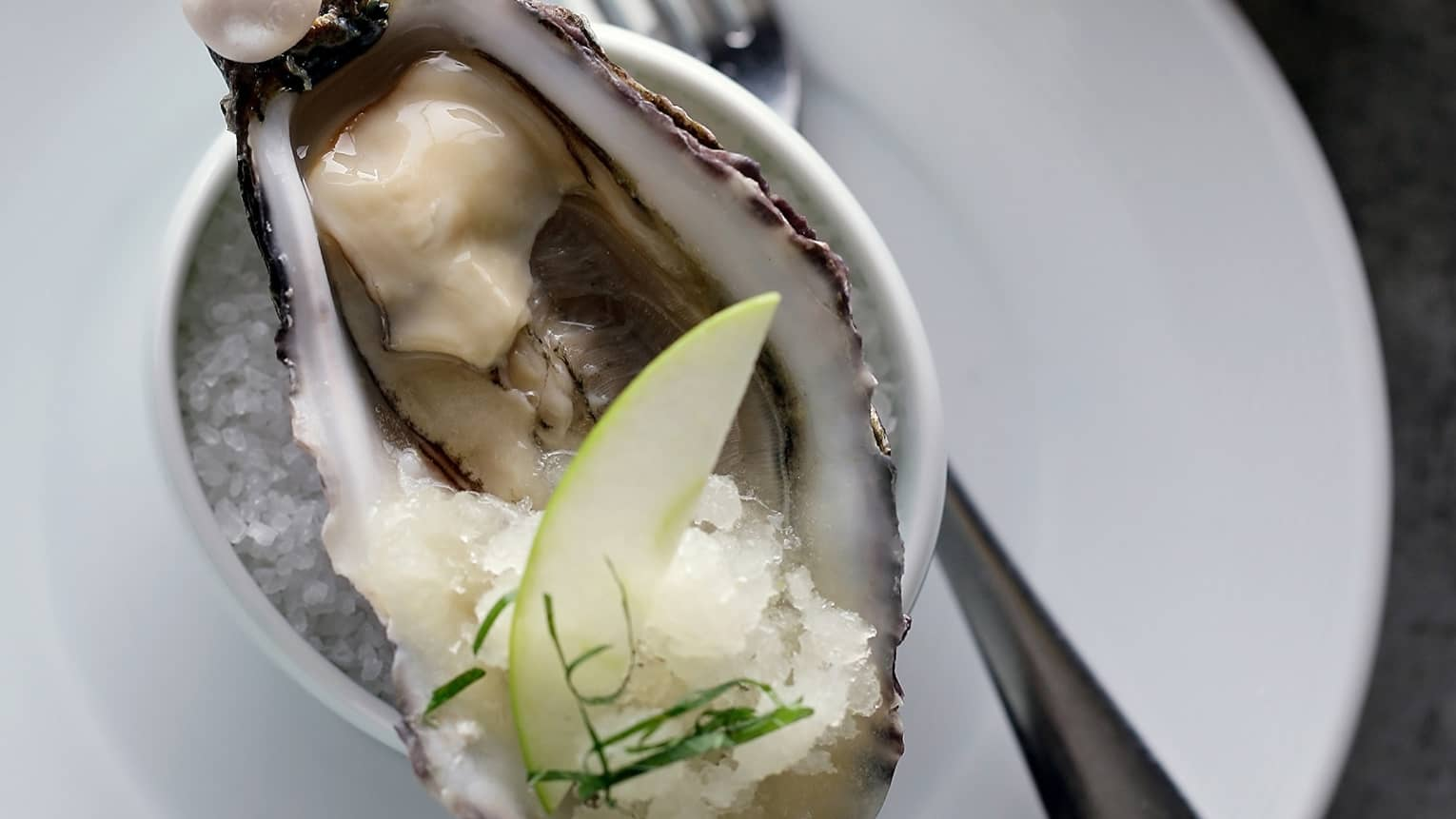 Close-up of French oyster in half shell on small bowl of salt