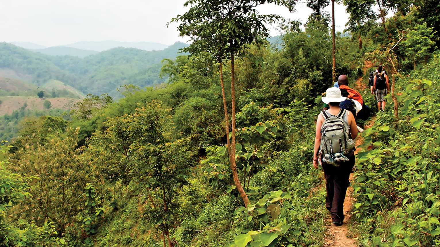 Back view of travellers hiking along path in jungle mountains, northern Thailand