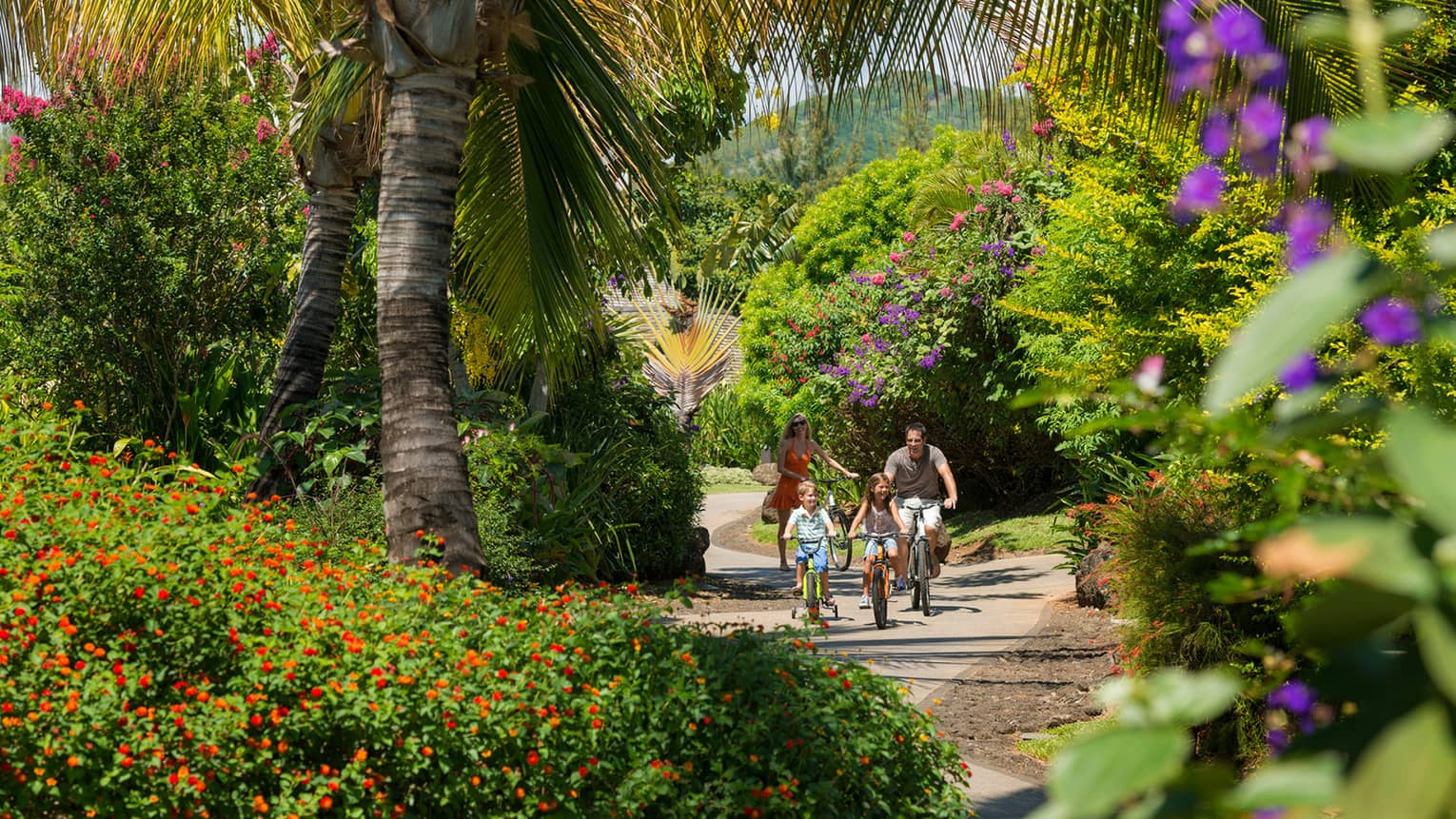 Family of four riding bikes on path amid lush flora and fauna
