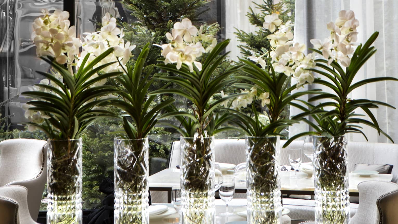 Tall crystal vases with white flowers