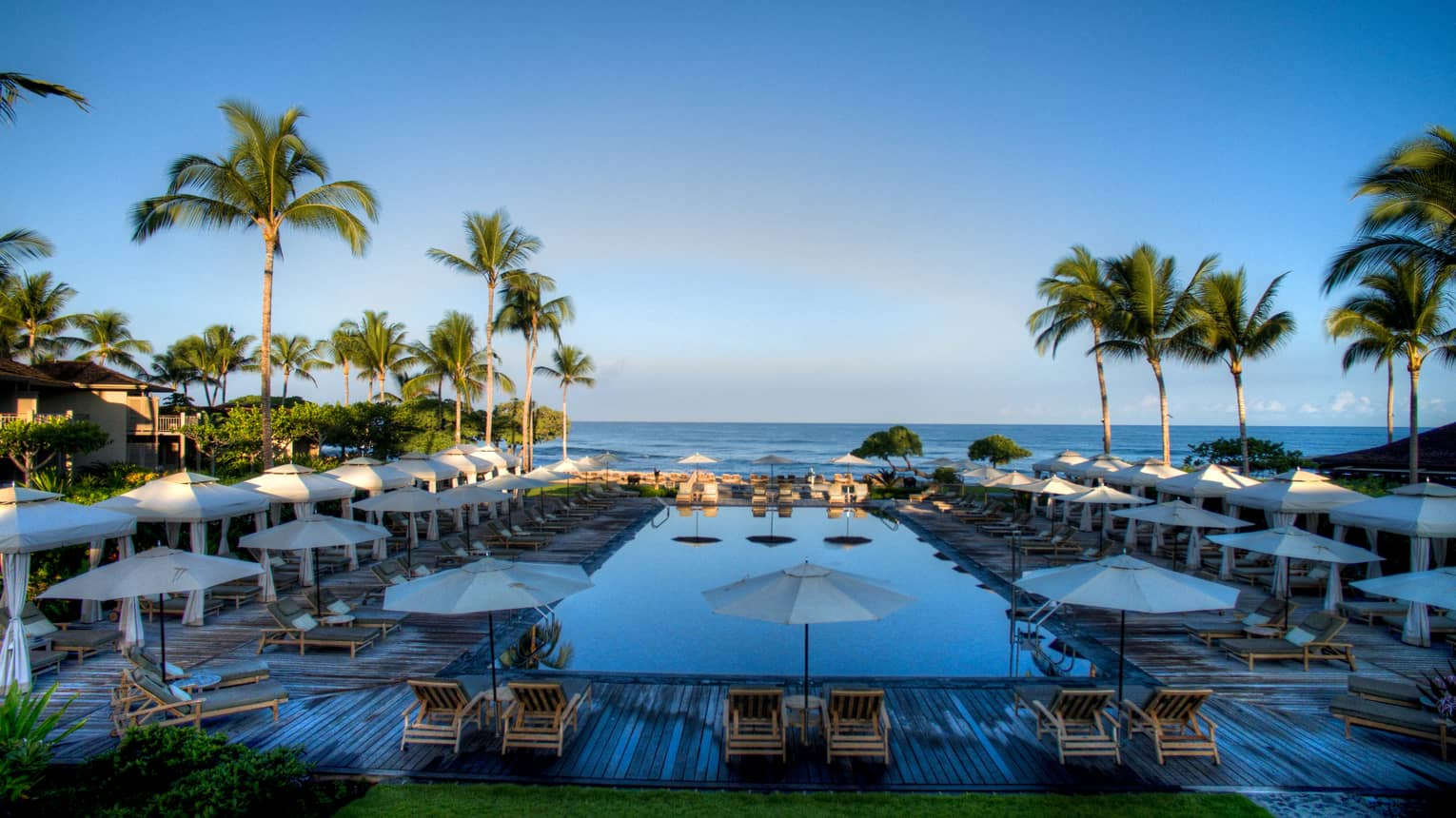 White cabanas, patio chairs and umbrellas line outdoor Beach Tree Pool under tall palms