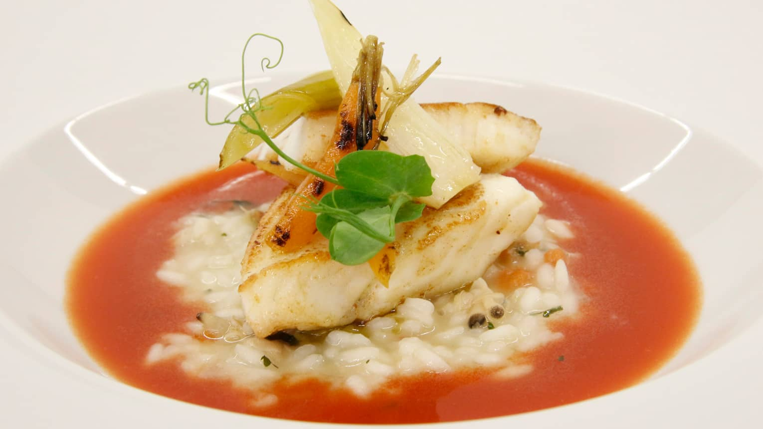 John Dory Fillet of white fish over red vinaigrette chili shiso and Japanese rice