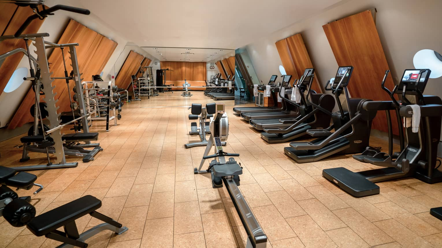 Fitness centre with rowing machine in middle, treadmills on right and weight equipment on left