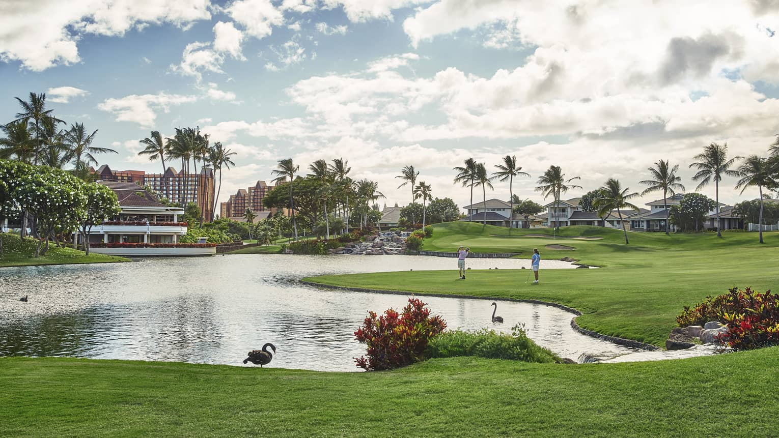 Golf course featuring a irregular shaped pond, tropical bushes, palm trees in the distance