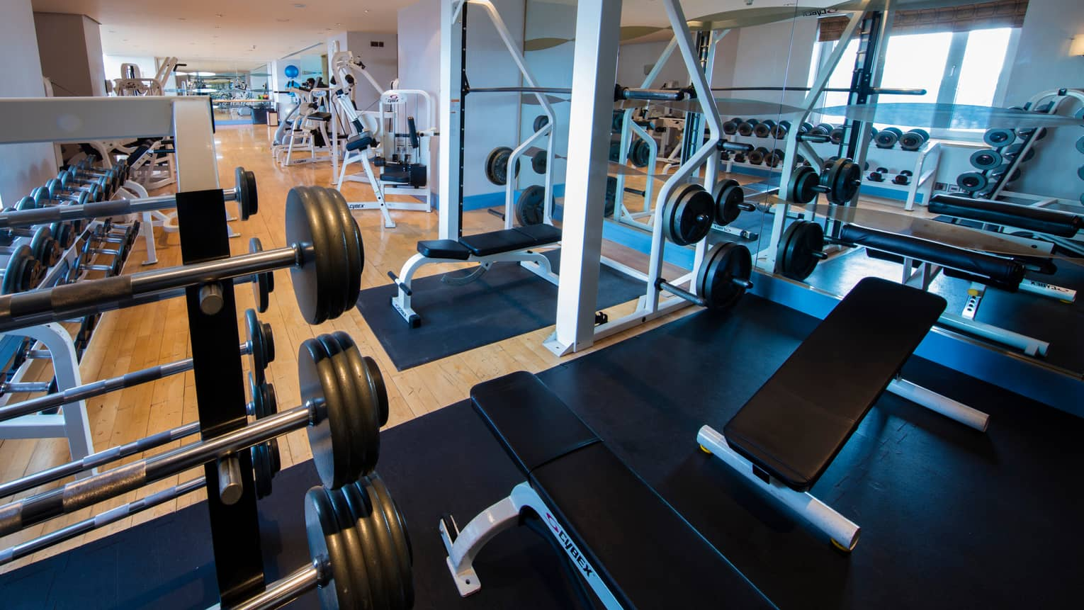 Fitness facility barbells and weight lifting machines, with cardio machines and mirrors on lower level