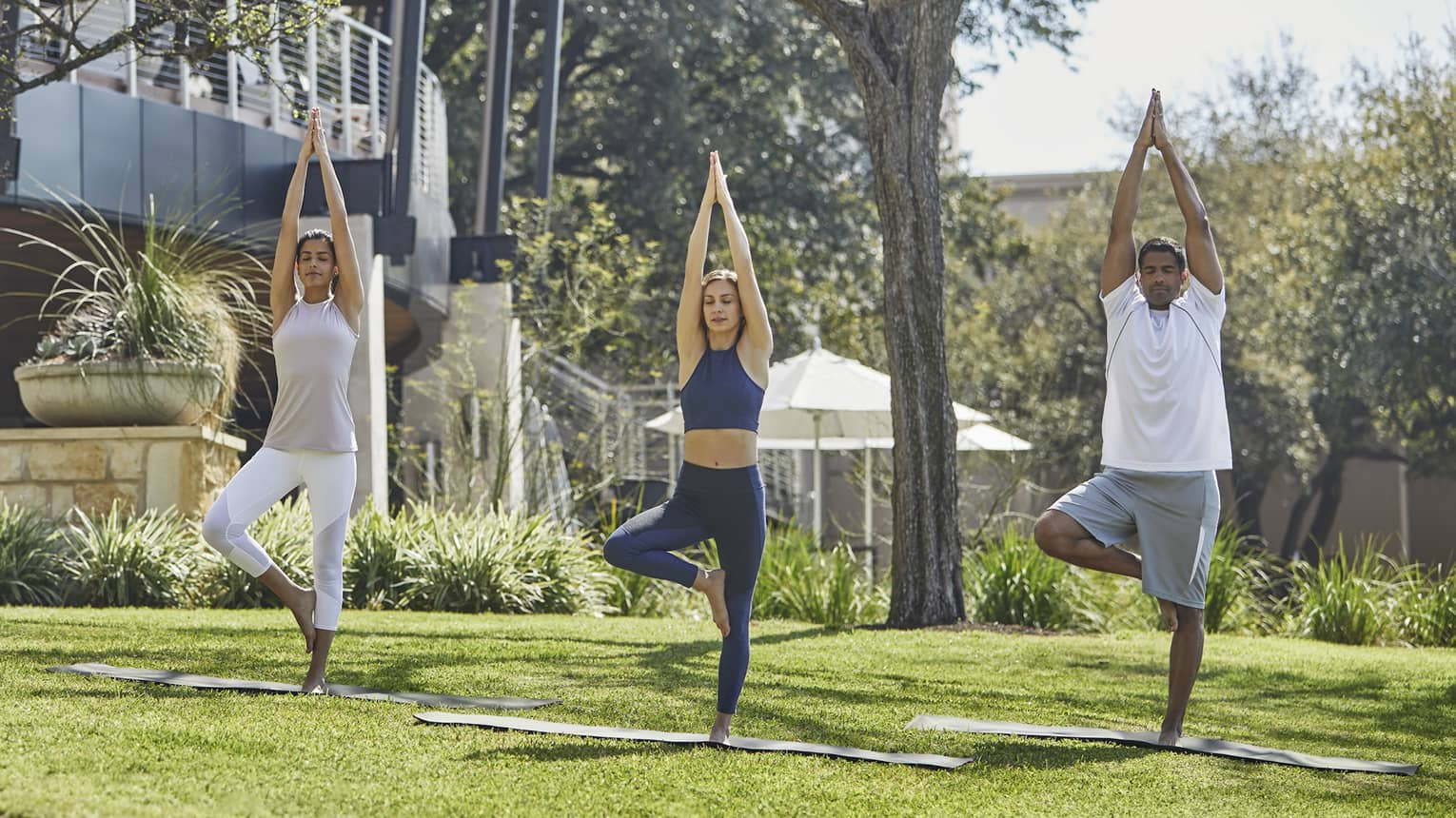 Guests balance while extending their arms to the sky during a yoga session