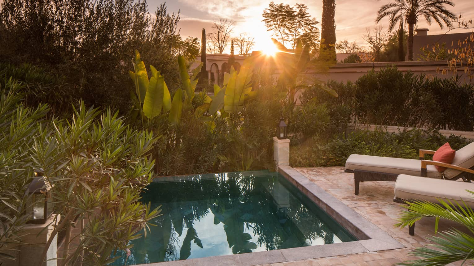 Sunset over tropical plants, garden by private villa plunge pool