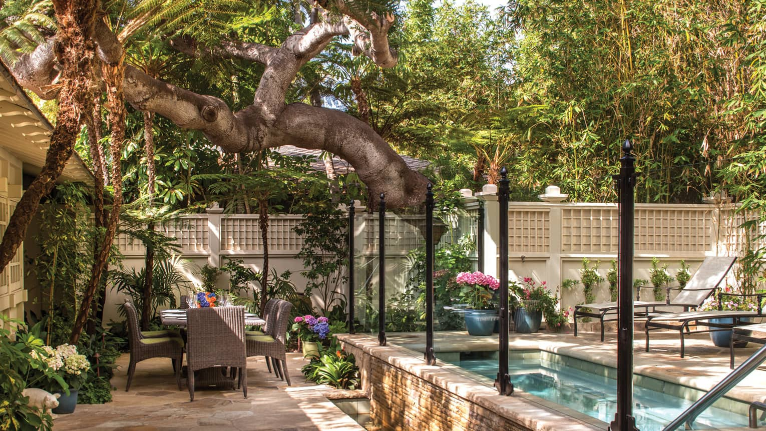 Large tree, branch hanging over Ty Warner bungalow patio dining table, plunge pool, flowers