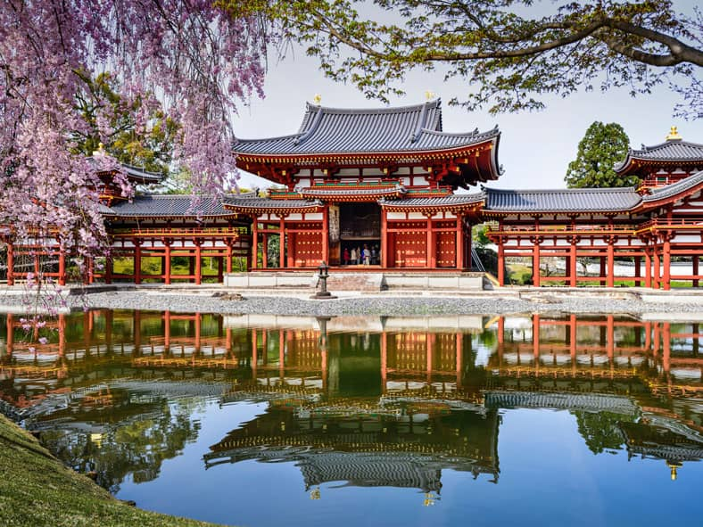 Visit Sacred Temples and Shrines