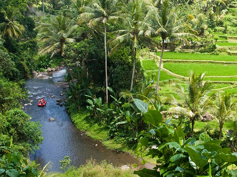 Go rafting on Bali's longest river