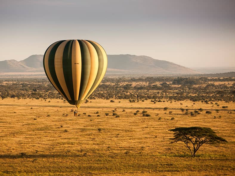 Soar above the Serengeti in a hot air balloon