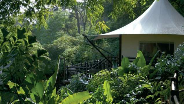 Four-Night Adventure Package Offered at Four Seasons Tented Camp Golden Triangle, a Luxury Tented Camp in the Golden Triangle, Thailand