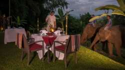 Comemore ocasiões especiais com jantares e eventos personalizados no Four Seasons Tented Camp Golden Triangle