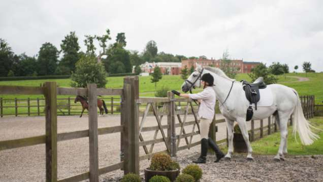 Equestrian Activities in Hampshire