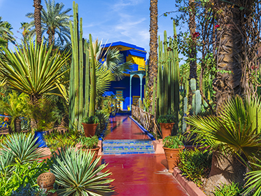 Find Design Inspiration at the Majorelle Gardens