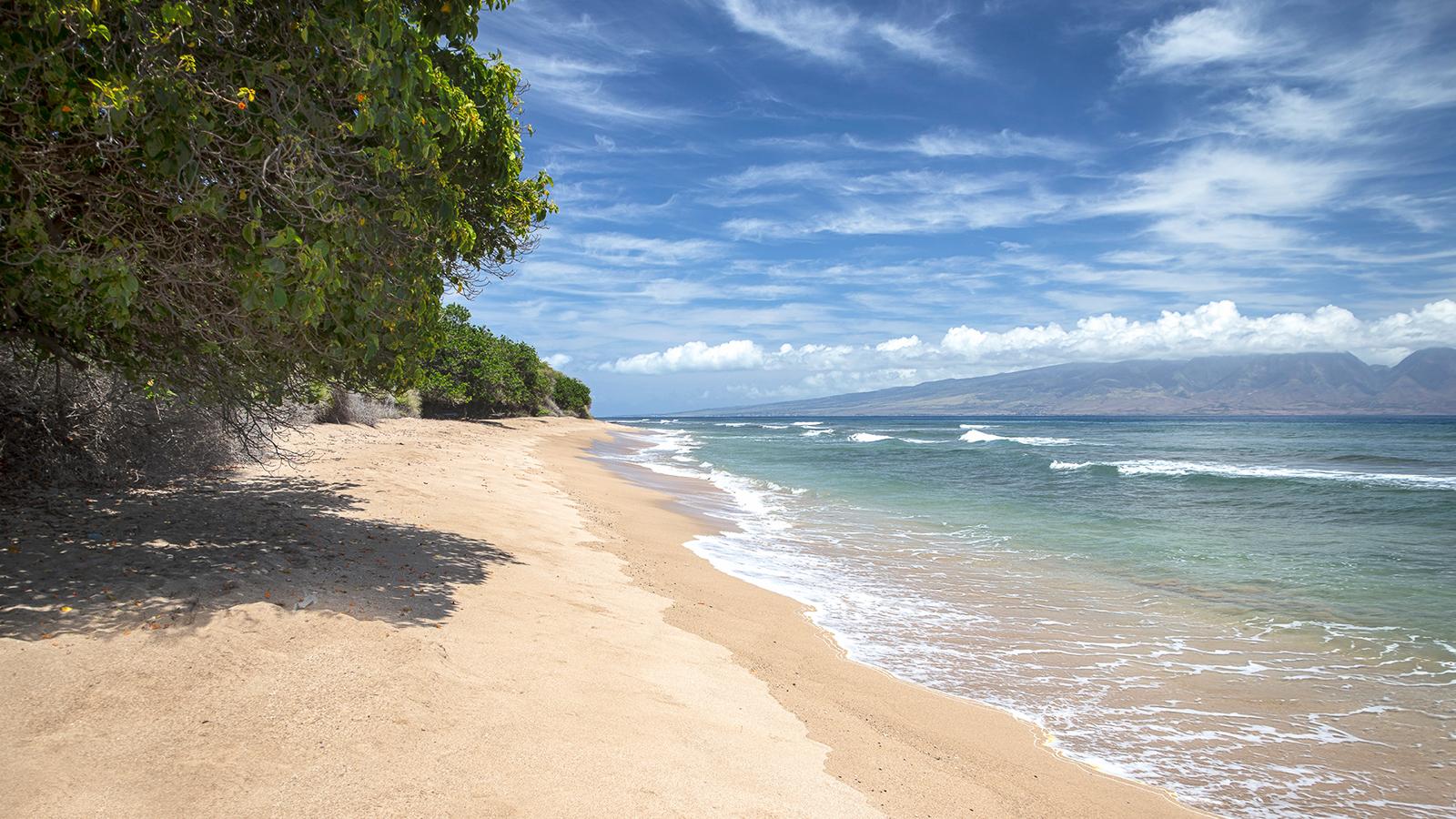 Beaches On Lanai  Hawaii