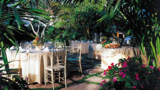 Palmera garden for Garden room 4 seasons